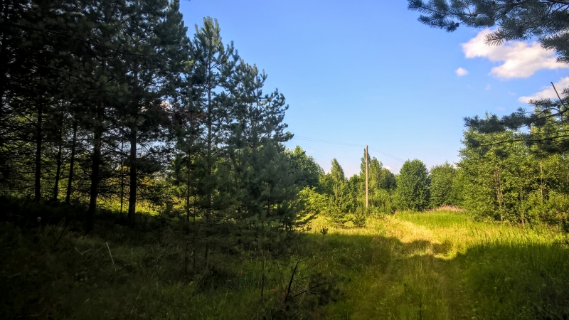 Чудесный земельный участок 2 Га. в лесу под строительство